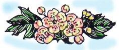 1871981.jpg