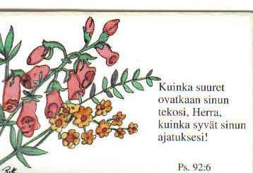 1934763.jpg