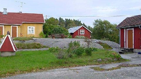 1871806.jpg